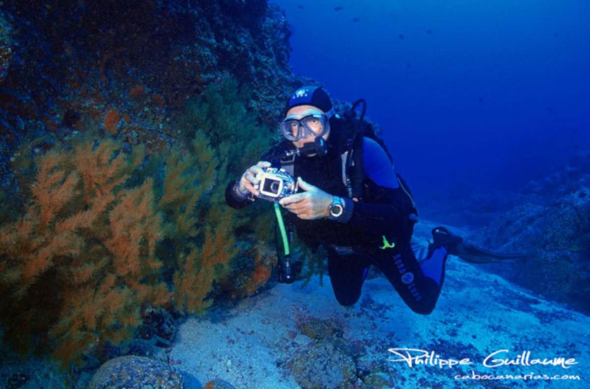Buceo con cámaras acuáticas